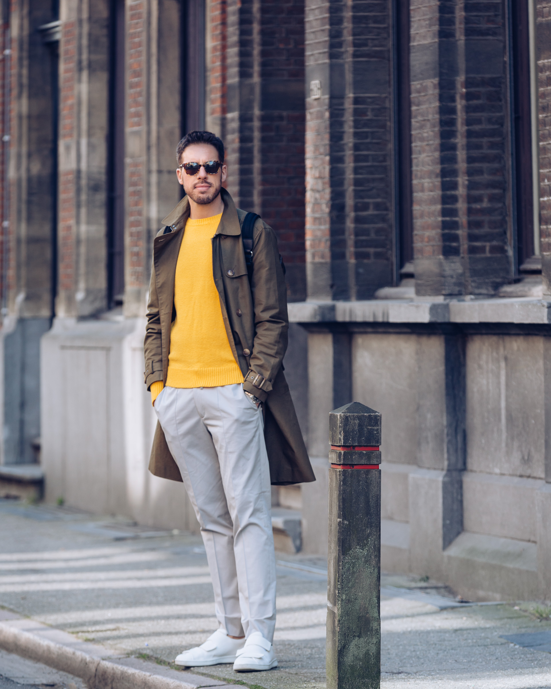 Antwerpen Yellow Sebastian Schmidt by Rose Time 2400-2
